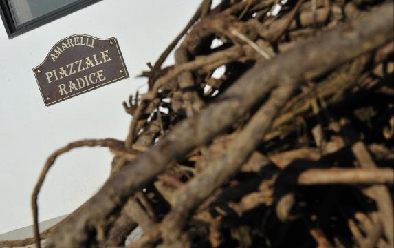 Amarelli, una storia secolare che trova spazio nella Treccani